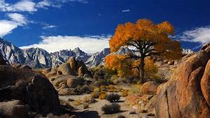 Autumn In Alabama Hills With Mount Whitney The Highest