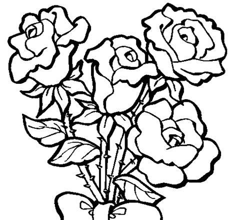 flores calas para dibujar imagui