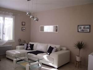 Deco Pour Salon : couleur mur salon taupe avec peinture murale couleur lin 2 couleur taupe peinture salon idees et ~ Teatrodelosmanantiales.com Idées de Décoration