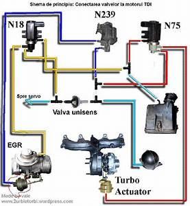 Installation Des Durites D U0026 39 Air Pour Le Turbo Passat Tdi