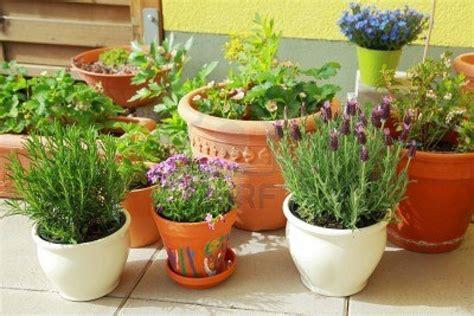 Grandes ideas para pequeñas terrazas (con imágenes