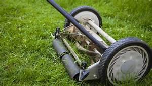 10 Best Manual Lawn Mower 2020