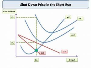 Shut Down Price  Short Run