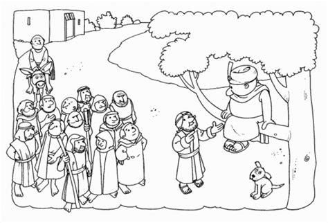 printable zacchaeus tree coloring pages  kids