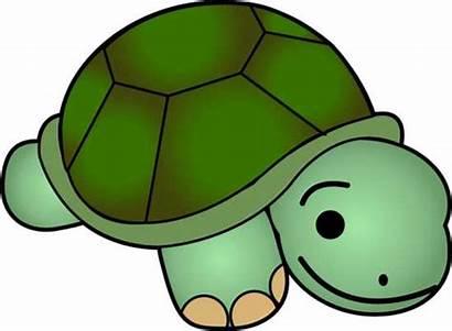 Turtle Clipart Clip Sea Browse Turtles Cliparts