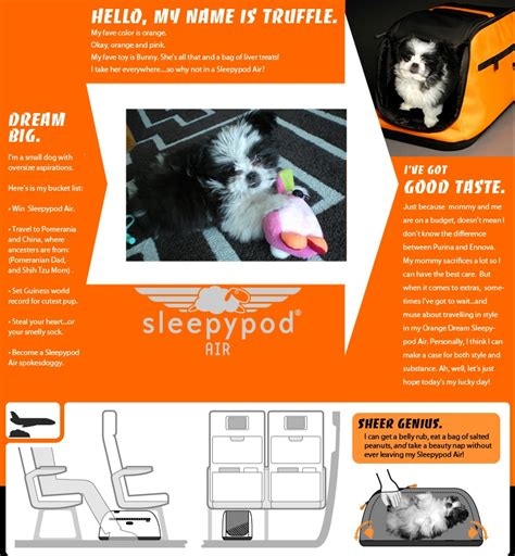 64329 Sleepypod Coupon by Winner Of The Sleepypod Air Pet Carrier Giveaway 187 Jaunt
