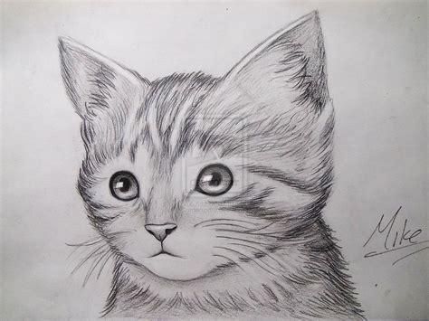 Cute Realistic Animals To Draw Wwwpixsharkcom Images