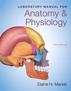 Laboratory Manual For Anatomy  U0026 Physiology  5th Edition
