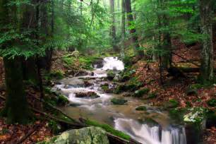 Mountain Stream Screensavers