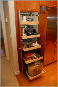 kitchen cabinet organizers ideas kitchen cabinet organizers pull out home design ideas