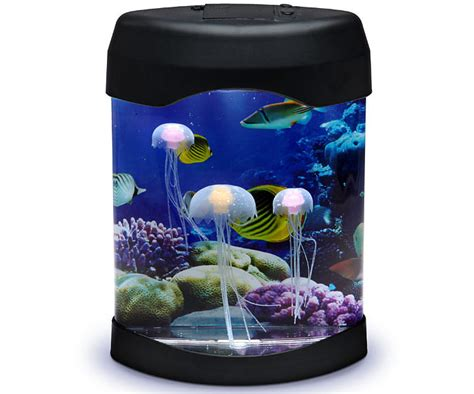 jellyfish mood l jellyfish wont sink top 10 gift ideas for this