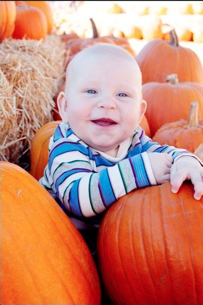 month baby boy photo shoot   pictures