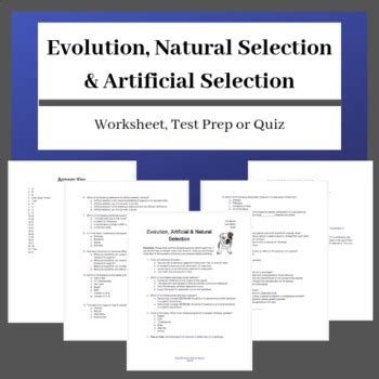 Natural selection is the differential survival and reproduction of individuals due to differences in phenotype. Evolution, Natural Selection & Artificial Selection: Worksheet or Quiz