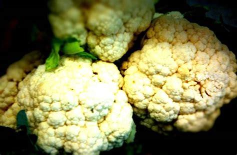 cuisiner un chou fleur le chou fleur un légume de saison à cuisiner de mille façons