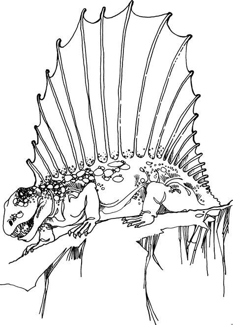 echse mit grossem faecher ausmalbild malvorlage tiere