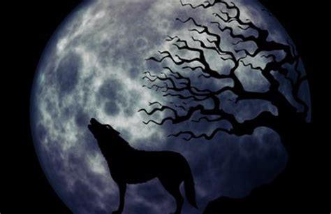 werwoelfe von duesterwald nachts  palermo geburtstagswelt
