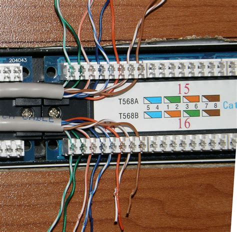 Patch Panel Telephone Wiring Free Software Shareware
