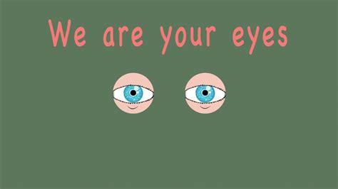 eye anatomyeye songhow  eyes worklearn