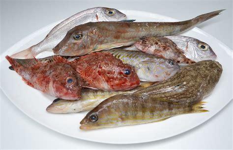 pesci cucina la zuppa di pesce aifb