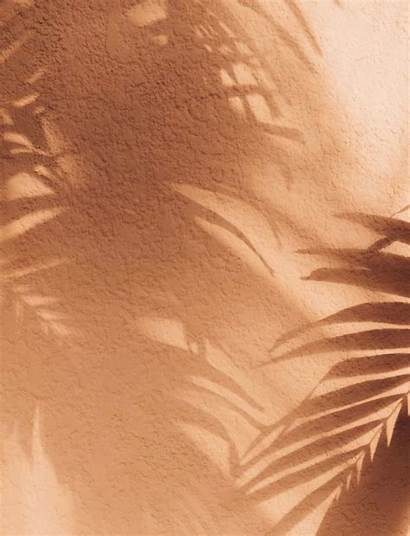 Tan Wallpapers Aesthetic Beige Peach Brown Classic
