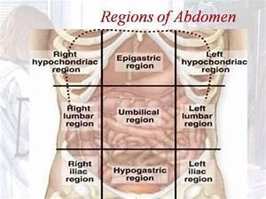 Mass In Right Hypochondrium