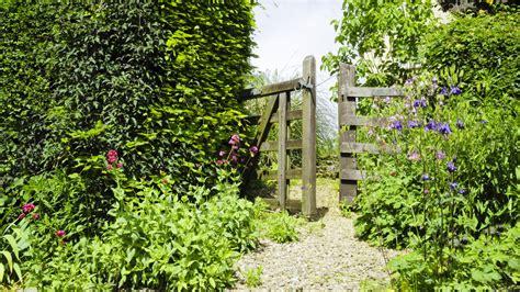 Sichtschutz Pflanzen Kleiner Garten by Sichtschutz Hecke Mit Gatter Franks Kleiner Garten