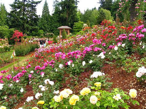 the garden portland portland garden s history lies in wwi the columbian