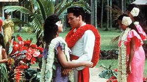 Watch Blue Hawaii Online For Free On 123movies