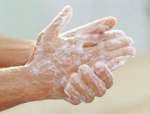 Effect of Handwashing on Bacterial Growth | The Dark Park