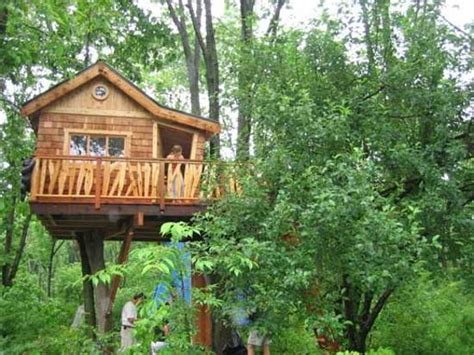 tree house designs  kids backyard ideas   children active  happy