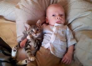 babies and cats cat and babies what could be cuter 20 pics weknowmemes