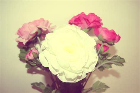 le fleur ikea le fleur ikea 28 images achetez le fleur ikea occasion annonce vente 224 castelnau le 34