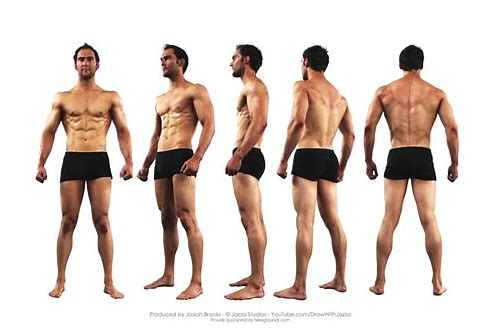 the anatomy reference pack download