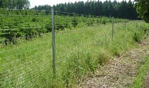 Zaun Bauen Pfosten Setzen Forum : wildzaun bauen schutz von forstkulturen mit ~ Lizthompson.info Haus und Dekorationen