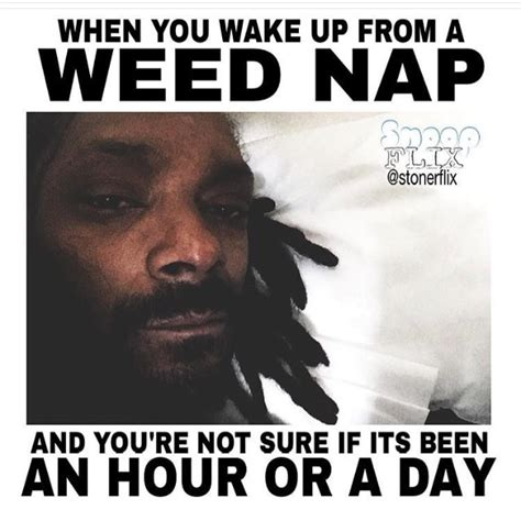 Memes About Smoking Weed - 10 best funny marijuana memes of the week august 9 16