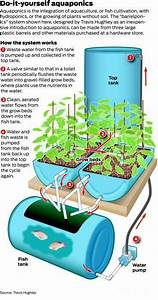 The Best Aquaponics Pumps To Keep Things Moving