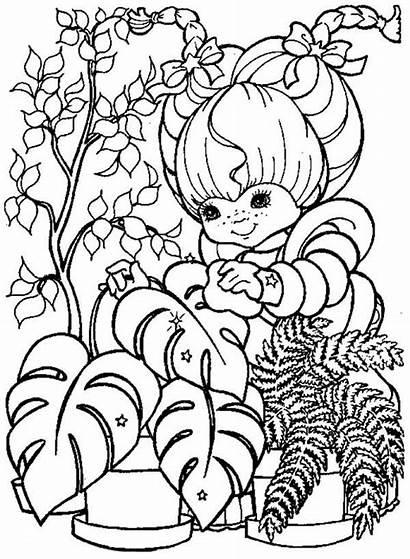 Plantas Colorir Desenho Cuidando Desenhos Patty Das