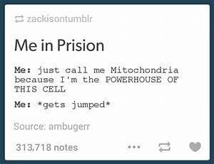 Mitochondria Is The Powerhouse Of The Cell General