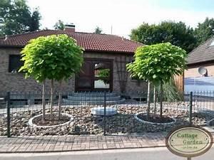 Kugel Trompetenbaum Schneiden : kugel trompetenbaum nana 12 14 hochstamm kein schneiden ~ Lizthompson.info Haus und Dekorationen