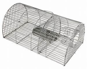 Piege à Rat Efficace : nasse rats la ferme de beaumont contre les rats et les ~ Dailycaller-alerts.com Idées de Décoration