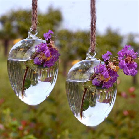 egg shape hanging glass vase hydroponic plants container