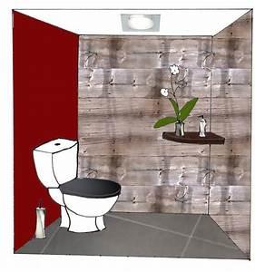 wc de couleur gris couleur peinture carrelage avec With nice quelle couleur pour les toilettes 3 revger idee decoration peinture toilette idee