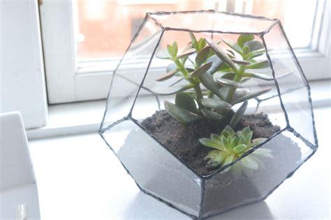 Diy Terrarium  How To Make A Geometric Terrarium The
