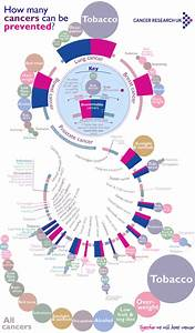 The Causes Of Cancer You Can Control - Cancer Research Uk