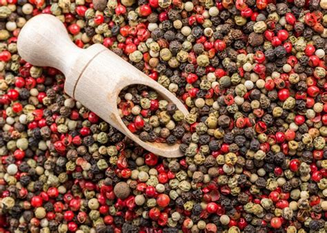 Where Did The Term Dishwater Come From by Where Does Pepper Come From Black Pepper Plant History