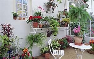 Que Planter En Juin : que planter dans une v randa entre 5 et 10 c d tente ~ Melissatoandfro.com Idées de Décoration