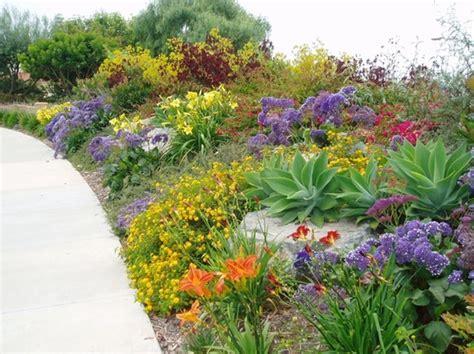 mediterranean landscaping plants pin by nancy ash on succulent plants pinterest