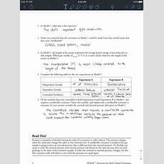 Sam Schoderbek Chemistry Gas Variables Pogil