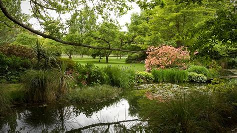 new zealand small guided tours rhododendron gardens tour