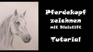Zeichnen Lernen Mit Bleistift : pferd zeichnen lernen mit bleistift pferdekopf teil 1 ohne farbe youtube ~ Frokenaadalensverden.com Haus und Dekorationen